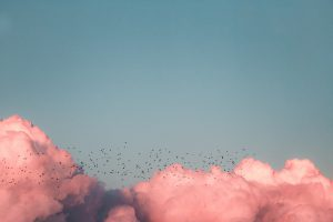 Pink clouds against an azure blue sky.